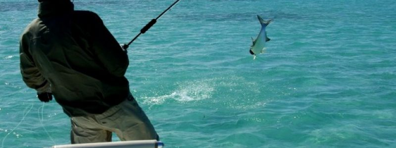Рыбалка в Крыму: на озерах и море. Платно и бесплатно. Лучшие места